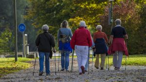 Abbey Nordic Walking Wandelstokken